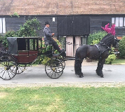 Horse and Carriage Hire in Glasgow